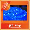 Singola striscia di colore SMD5050 LED