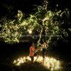 Свет церемонии венчания Fairy