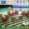 Sofá ao ar livre moderno do jardim do lazer da mobília (TG-007)