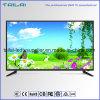 """MPEG2 NTSC isdb-t 42 de """"Digitale Dled van TV Steun van de Muur van de 1080P- Resolutie"""