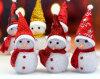 Luz de la Navidad encantadora de encargo de la manera