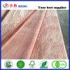 houten Vernisje van de Ceder van het Potlood van de Besnoeiing van 0.3mm het Roterende