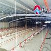 La volaille automatique contrôlent le matériel de cloche pour des poulets à rôtir et des éleveurs