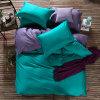 Insieme del coperchio del Duvet del cotone della tessile della casa del fornitore della Cina