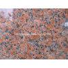 Granito vermelho Maple G562 para revestimento de parede