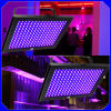 luce UV del comitato di 192PCS 5mm DMX LED