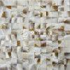 Azulejo de mosaico de agua dulce de la cara del arco del color 25*25m m de Brown de la naturaleza del shell