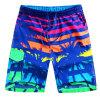 OEM della fabbrica 2017 Shorts di usura di nuotata degli uomini di usura della spiaggia di modo di estate