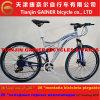 Bicicleta cheia 21s da suspensão MTB do Gainer 26 de Tianjin