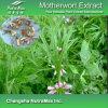 Выдержка Motherwort 100% естественная (10: 1, 20%Alk)