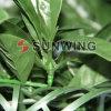 Rete fissa artificiale decorativa del giardino UV della prova di Sunwing