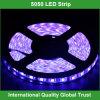 24 вольта 5m RGB 5050 СИД Strip Lighting