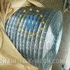 Galvanizado revestido de PVC e malha de arame soldado