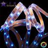 Striscia flessibile del LED (GRFT1000-60X 5050)