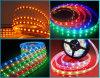 Luz de tira flexible de 5050 SMD LED