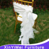 Fancy popolare White Chair Sashes per Weddings