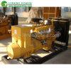 Groupes électrogènes de gaz du GNL CNG de LPG