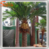 Latest Style Garden Decoration Fake Artificial Date Palm Tree