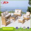 Mobilia esterna del giardino della mobilia di /Patio della mobilia (DH-1056)