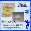 SUS 250 400mg injizierbares flüssiges Testosteron Sustanon 250 für Muskel-Gebäude