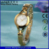 ODMの偶然のステンレス鋼の水晶昇進の女性腕時計(Wy-010B)