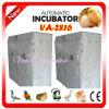 Vene New Digital Egg Hatching Equipment für Overseas Promotion (VA-2816)