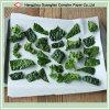 2-Lado tratan de silicona para la alimentación de papel para hornear Camisa del Pergamino de cocina