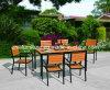 Деревянная мебель патио, напольный деревянный комплект, алюминиевый деревянный стул (WM-28)