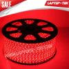 Fabrik Price WS 110V 220V SMD 5050 Red LED Strip