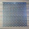 1 M X 2 M, 1 milímetro de metal de hoja perforado Ss304 grueso con la echada del orificio de 2 milímetros y del orificio de 4 milímetros
