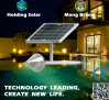 Luz de la pared del jardín del panel solar LED del monocristal con impermeable