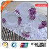 conjunto de la placa de la porcelana 18/20/24/30/47/72PCS