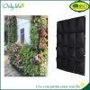 Onlylife wachsen Hauptdekoration geglaubte lebende Wand-Pflanzer-Vertikale Beutel