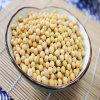 Extrait de 40 % d'isoflavones de soja par HPLC