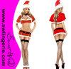 Sexy Natal santa traje T596