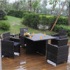 خارجيّ حديقة [ويكر] طاولة وكرسي تثبيت على عمليّة بيع