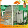 Machine van de Transportband van de Schraper van de techniek de Plastic Opheffende voor Fruit en Groente