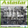 Cer-integriertes Standardbier-abfüllender Füllmaschine-Produktionszweig