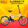 Bike сертификата TUV Ce складной электрический (LWEB-T2007F)