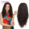 Perruque brésilienne de cheveux humains de Vierge de prix de gros