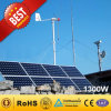 CE Approved New Brushless Hybrid Wind Solar Generator высокой эффективности 1kw