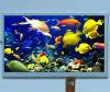 9 módulo de la pulgada TFT LCD para DVD portable y la TV
