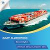 Conteneur de fret de la mer de remise de la Chine à travers le monde