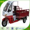 고품질 Chongqing 기관자전차 Trike