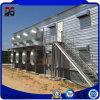 Matériau à la maison insonorisé en acier préfabriqué galvanisé pour la ferme de poulet