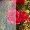 Windows le verre de diamant, de la flore, Karatachi, verre à motifs