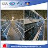 Gaiola quente da galinha das aves domésticas da camada da venda da exploração agrícola de galinha de Kenya