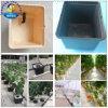 Vegetais hidropônicos Grow Pot Dutch Bucket