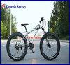 Vélo de plage de pneu de modèle neuf de 27 vitesses gros