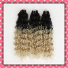Heißes Two Tone brasilianisches Hair Weaving Curly Hair 18inches